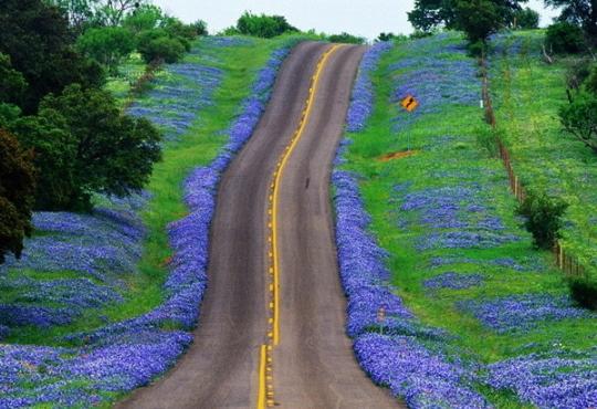 Setx Senior Spring Break Road Trip It S Time For