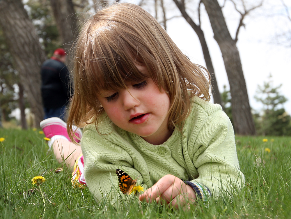 Butterfly release harbor hospice b