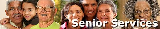 senior education Lumberton Tx d