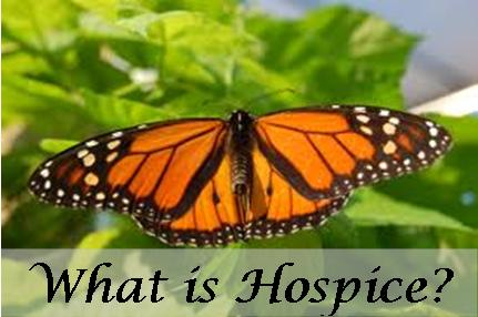 Hospice Care Information Southeast Texas