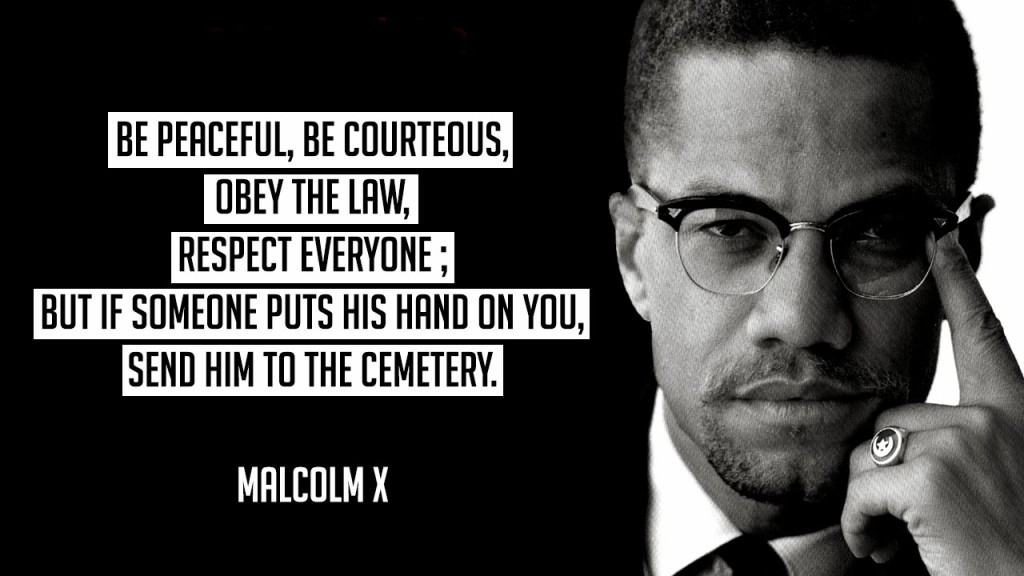 Malcolm X Black History Month
