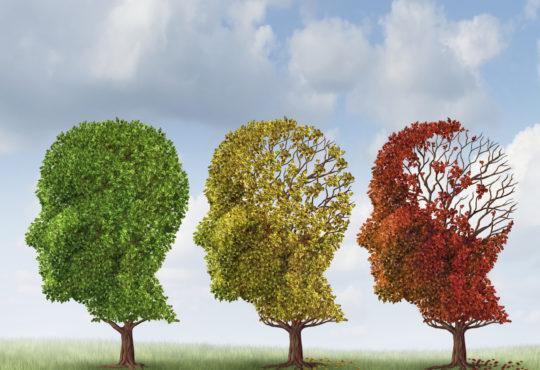 dementia care Beaumont, Alzheimer's care Beaumont, dementia Orange TX, Alzheimer's Port Arthur, dementia Port Arthur, Alzheimer's Port Arthur, East Texas dementia care, Alzheimer's Southeast Texas