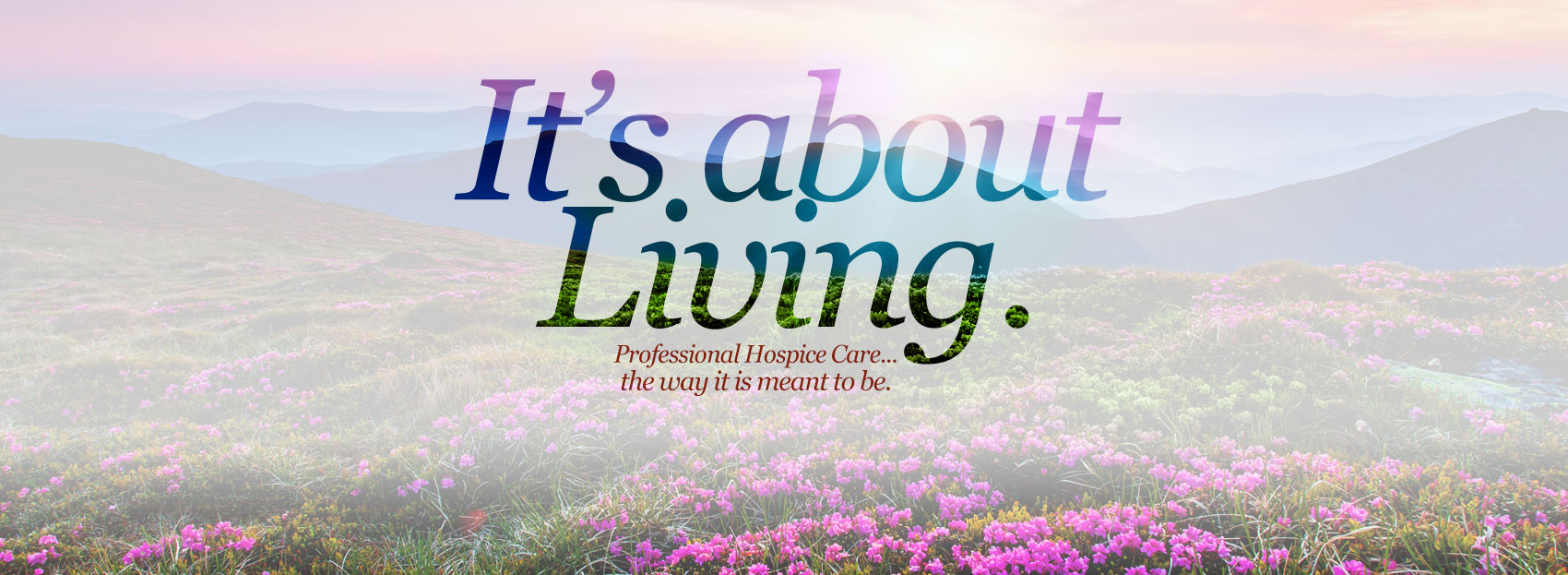 Setx Hospice Agency Best Hospice Care Of Texas Setx